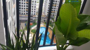 View căn hộ nhìn trực diện Hồ bơi và công viên nội khu Lovera Vista Bình Chánh - Khang Điền HCM